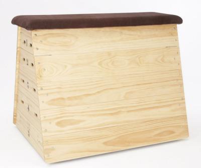 Dynamo Vaulting Box
