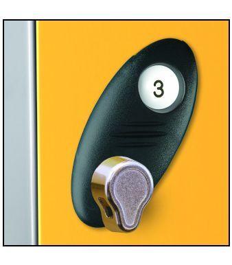 Hasp And Staple Lock